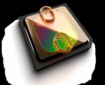 Ion proton chip